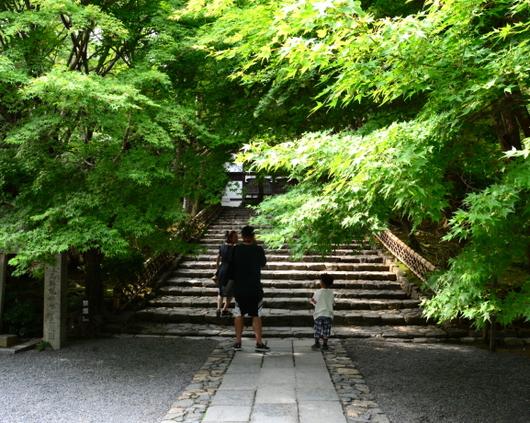 1-19.07.21 竜安寺-1.jpg