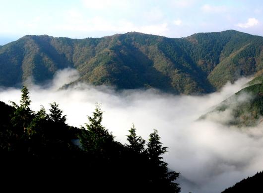 1-19.11.09 立里荒神社の雲海-4.jpg
