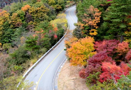 1-19.12.06 寒霞渓山頂に至る紅葉-1.jpg